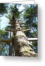 Tree Ladder Greeting Card