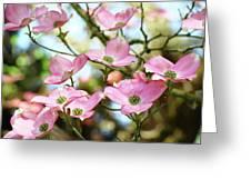Tree Landscape Pink Dogwood Flowers Baslee Troutman Greeting Card