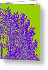 Tree Leaves D4 Greeting Card
