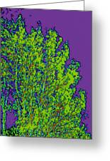 Tree Leaves D5b Greeting Card