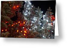 Tree Lights Greeting Card