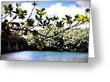 Tree Limb Over Water 2 Greeting Card