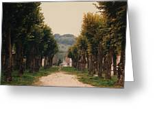 Tree Lined Pathway In Lyon France Greeting Card