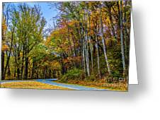 Tree Lined Road Greeting Card