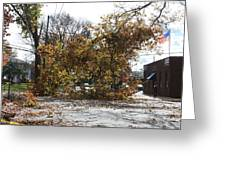 Tree Meets Hurricane Sandy By The Fair Lawn Nj Post Office Greeting Card