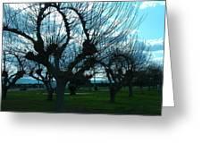 Tree Of Art Greeting Card