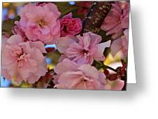 Tree Of Flowers Greeting Card