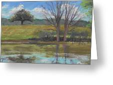 Tree Of Life Landscape Greeting Card