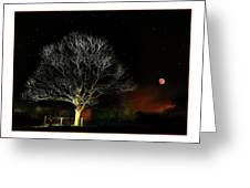 Tree Of Light Greeting Card