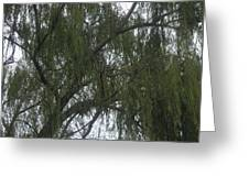 Tree Of Tears Greeting Card