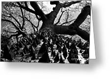 Tree Of Thorns B Greeting Card