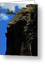 Tree On A Cliff At Battleship Rock New Mexico - 003 Greeting Card