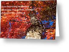 Tree On Fire - Haiku Greeting Card