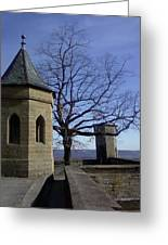 Tree On The Castle Wall Greeting Card