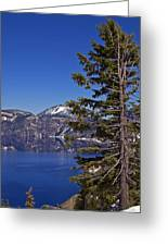 Tree Over Crater Lake Greeting Card