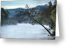 Tree Over Gasconade River Greeting Card