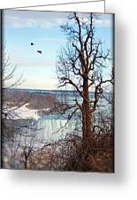 Tree Overlooking The Falls Greeting Card