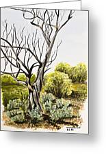 Tree Painting Greeting Card