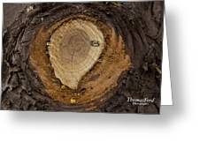 Tree Sap Greeting Card