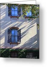 Tree Shadows On Savannah House Greeting Card