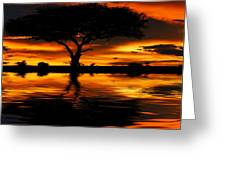 Tree Silhouette And Dramatic Sunset Greeting Card