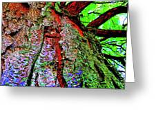 Tree Skin Greeting Card
