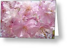 Tree Spring Pink Flower Blossoms Art Print Baslee Troutman Greeting Card