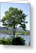 Tree Standing Tall Greeting Card