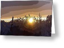 Tree Top Sunset 2 Greeting Card