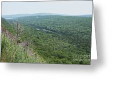 Tree Top Valley Greeting Card