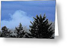 Tree Tops 1 Greeting Card
