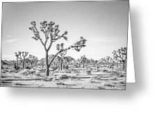Tree Valley Greeting Card