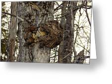 Tree Wart Greeting Card