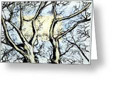Tree With Rectangle Sun Greeting Card