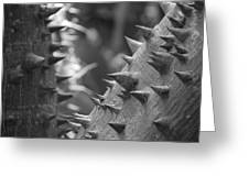 Tree With Spikes And Thorns Greeting Card