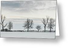 Treeline In Snow, England Greeting Card