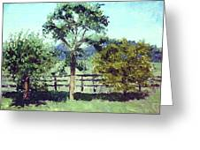 Treeo In The Paddock Greeting Card