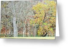 Trees 024 Greeting Card