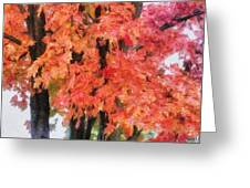 Trees Aflame Greeting Card