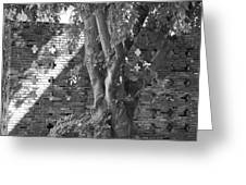 Trees And Brick Crosses Greeting Card