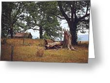 Trees And Cabin Greeting Card