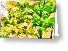Trees And Leaves 1 Greeting Card
