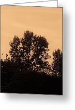 Trees And Geese In Sepia Tone Greeting Card