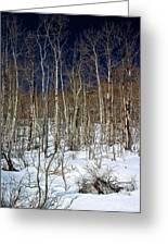 Trees And Something In The Snow Greeting Card