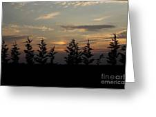 trees and West Greeting Card