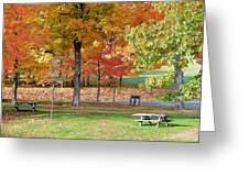 Trees Begins Autumn Color Greeting Card