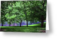 Trees By A Pond Greeting Card