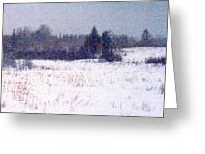 Trees By The Snow Field Ae Greeting Card