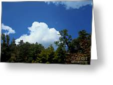 Trees, Clouds, And Sky Greeting Card