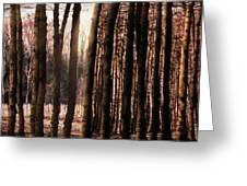 Trees Gathering Greeting Card